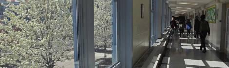 Sunlit hallway at NEST+m.