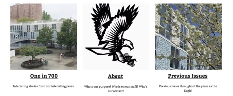The Eagle, school newspaper of NEST+m
